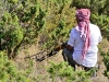 bhd-abruzzo2011-sani-1040