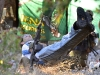 bhd-abruzzo2011-sani-1077